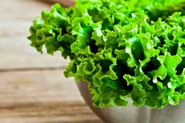 lystya-salatu-e1610971597102-282x188-1.jpg