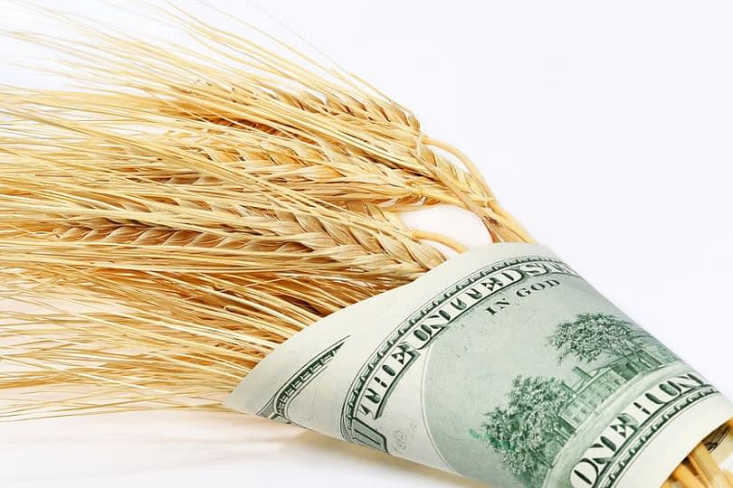 2561_wheat_and_dollars-bigstockphoto.jpg