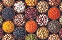 d65598b-seeds1.jpg