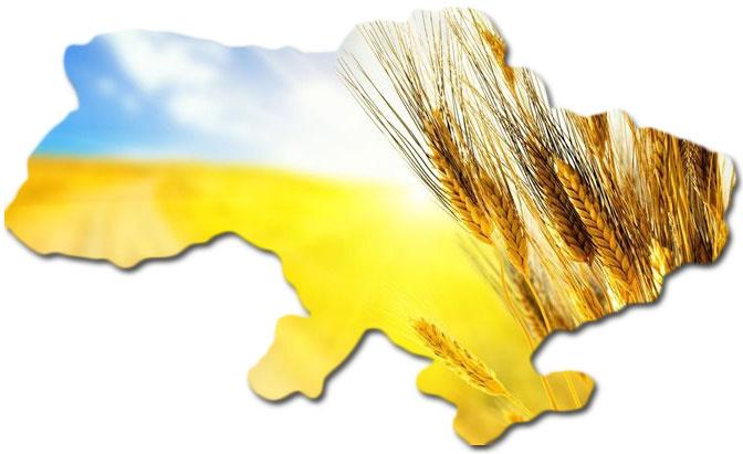 769_item_pict_big_map-ukraine.jpg